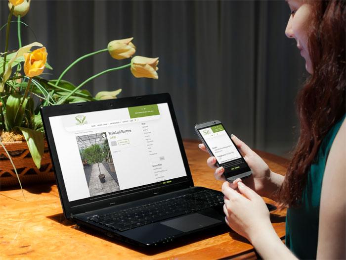 Wheatley Farm website on a laptop